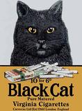 Chat noir Blechschild