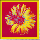 Daisy, c.1982 (Fuchsia and Yellow) Framed Print Mount by Andy Warhol
