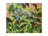 Ladybirds, 2013 Giclee Print by Andrew Macara