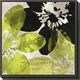 Bloomer Tile VI Framed Print Mount by James Burghardt