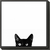 Curiosity Framed Print Mount by Jon Bertelli