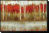 The Edge Framed Print Mount by Allison Pearce