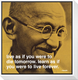 Gandhi: Live and Learn Framed Print Mount