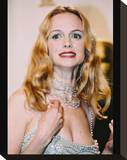 Heather Graham Stretched Canvas Print