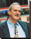 John Cleese Stretched Canvas Print