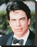 Peter Gallagher Stretched Canvas Print