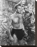 Lex Barker Stretched Canvas Print