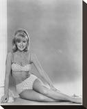 Shelley Fabares Stretched Canvas Print