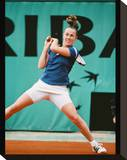 Martina Hingis Stretched Canvas Print