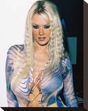 Jenna Jameson Stretched Canvas Print