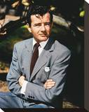 Robert Walker Stretched Canvas Print