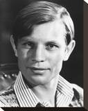 Michael York Stretched Canvas Print