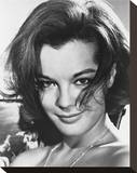Romy Schneider Stretched Canvas Print