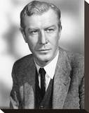 Edward Mulhare Stretched Canvas Print