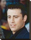 Matt Leblanc Stretched Canvas Print