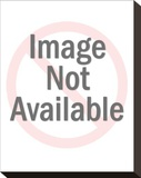 Christina Applegate Stretched Canvas Print