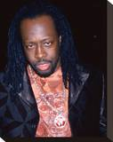 Wyclef Jean Stretched Canvas Print