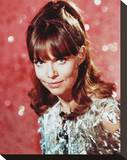 Barbara Feldon Stretched Canvas Print
