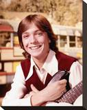 David Cassidy Stretched Canvas Print