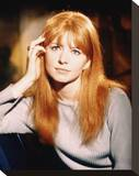 Jane Asher Stretched Canvas Print