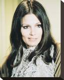 Paula Prentiss Stretched Canvas Print