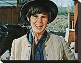 Kim Darby Stretched Canvas Print