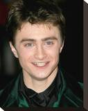 Daniel Radcliffe Stretched Canvas Print