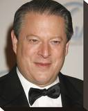 Al Gore Stretched Canvas Print