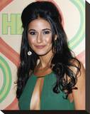 Emmanuelle Chriqui Stretched Canvas Print