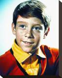 Bill Mumy Stretched Canvas Print