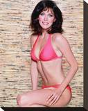 Tanya Roberts Stretched Canvas Print