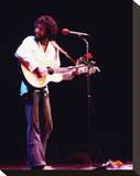 Cat Stevens Stretched Canvas Print