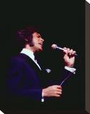 Engelbert Humperdinck Stretched Canvas Print