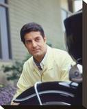 Peter Lupus Stretched Canvas Print