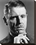 Edward Fox Stretched Canvas Print
