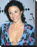 Julia Louis-Dreyfus Stretched Canvas Print