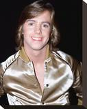 Shaun Cassidy Stretched Canvas Print