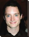 Elijah Wood Stretched Canvas Print