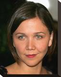 Maggie Gyllenhaal Stretched Canvas Print