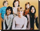 The Partridge Family Stretched Canvas Print