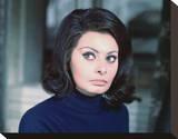 Sophia Loren Stretched Canvas Print