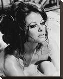 Claudia Cardinale Stretched Canvas Print