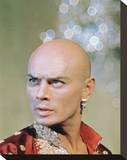 Yul Brynner Stretched Canvas Print