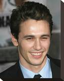 James Franco Stretched Canvas Print