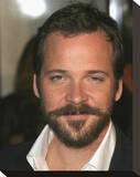 Peter Sarsgaard Stretched Canvas Print