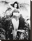 Julie Newmar Stretched Canvas Print