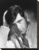 Alan Bates Stretched Canvas Print