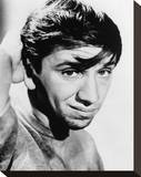 Bob Denver - The Many Loves of Dobie Gillis Stretched Canvas Print