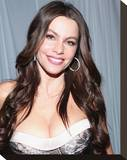 Sofia Vergara Stretched Canvas Print