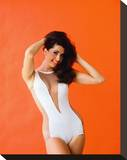 Edy Williams Stretched Canvas Print